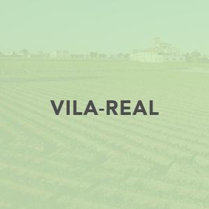 Contacte CAECV Vila-Real