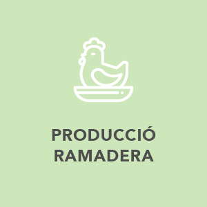 Produccio Ramadera