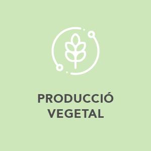 Produccio Vegetal